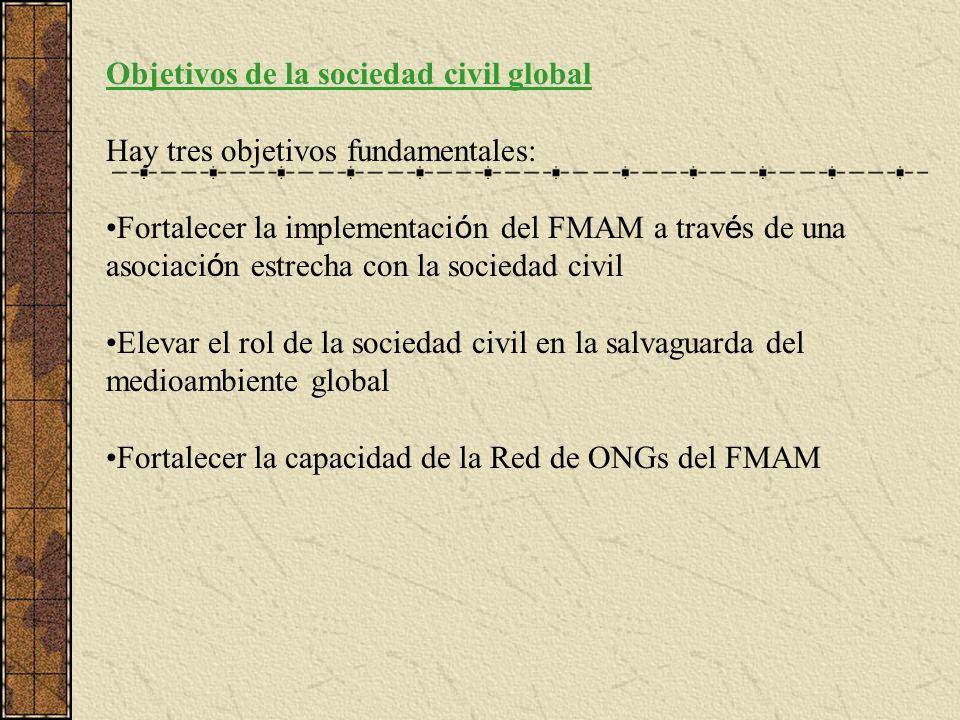 Objetivos de la sociedad civil global Hay tres objetivos fundamentales: Fortalecer la implementaci ó n del FMAM a trav é s de una asociaci ó n estrecha con la sociedad civil Elevar el rol de la sociedad civil en la salvaguarda del medioambiente global Fortalecer la capacidad de la Red de ONGs del FMAM