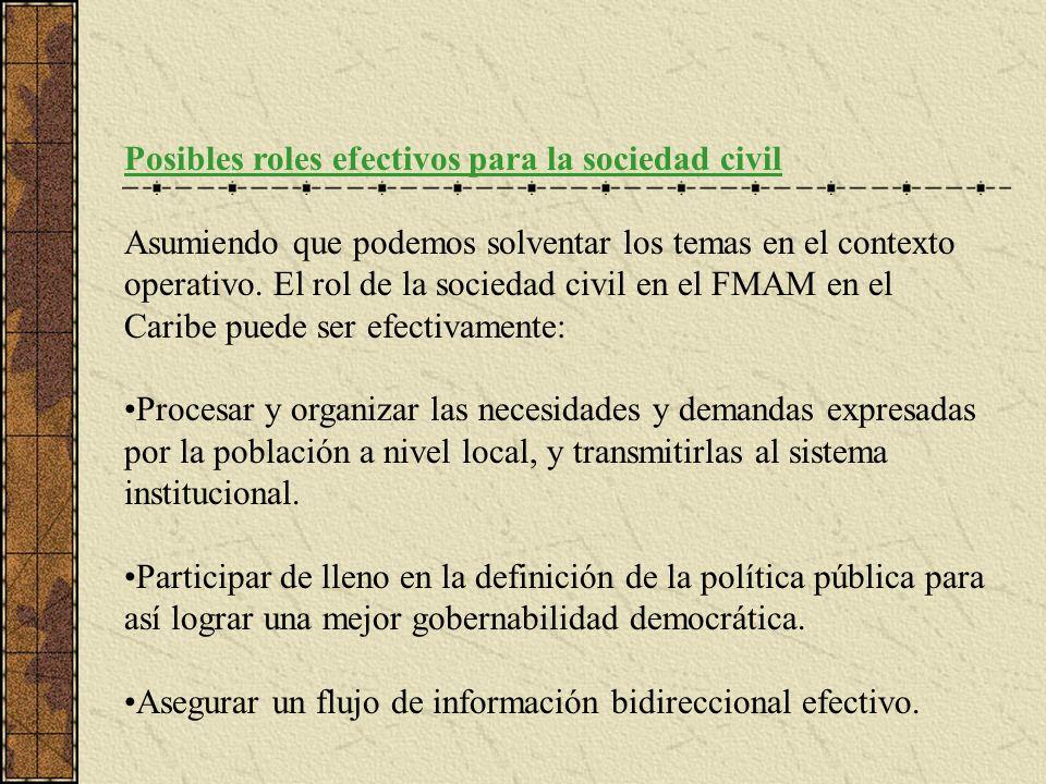 Posibles roles efectivos para la sociedad civil Asumiendo que podemos solventar los temas en el contexto operativo.