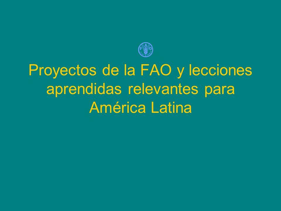 Proyectos de la FAO y lecciones aprendidas relevantes para América Latina