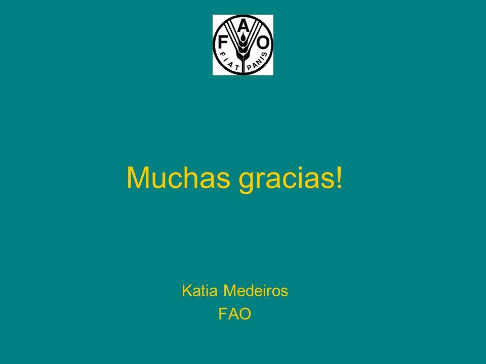 Muchas gracias! Katia Medeiros FAO