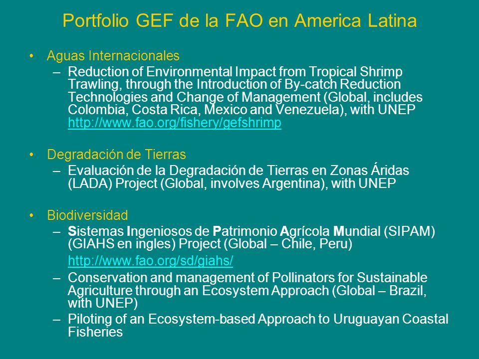 Portfolio GEF de la FAO en America Latina Aguas Internacionales –Reduction of Environmental Impact from Tropical Shrimp Trawling, through the Introduc