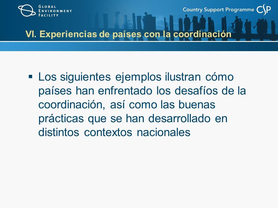VI. Experiencias de países con la coordinación Los siguientes ejemplos ilustran cómo países han enfrentado los desafíos de la coordinación, así como l