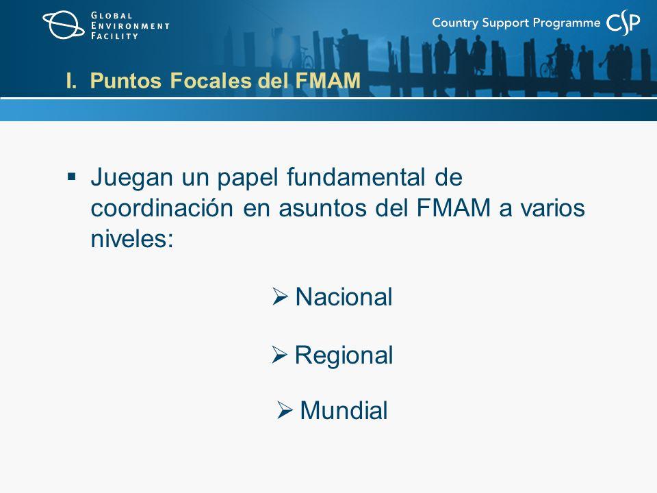 I. Puntos Focales del FMAM Juegan un papel fundamental de coordinación en asuntos del FMAM a varios niveles: Nacional Regional Mundial