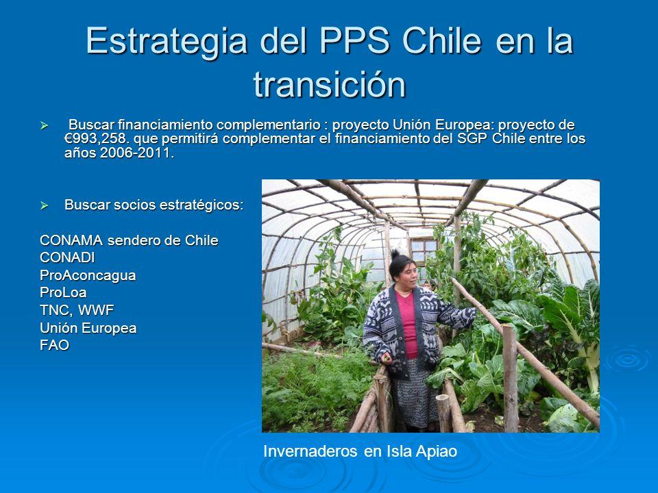 Estrategia del PPS Chile en la transición Buscar financiamiento complementario : proyecto Unión Europea: proyecto de 993,258. que permitirá complement
