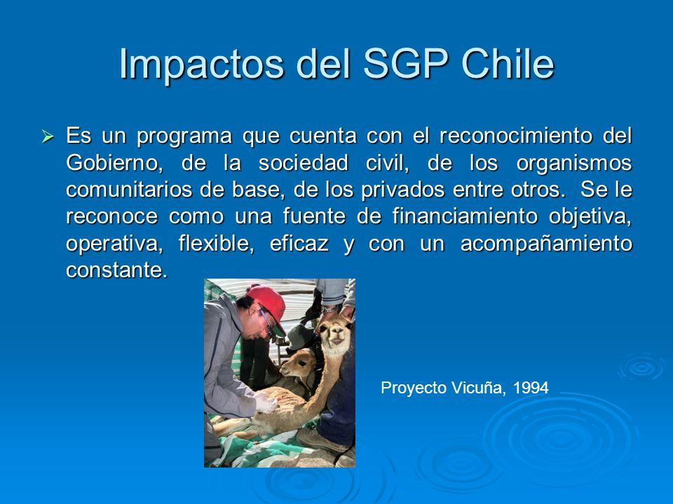 Impactos del SGP Chile Es un programa que cuenta con el reconocimiento del Gobierno, de la sociedad civil, de los organismos comunitarios de base, de