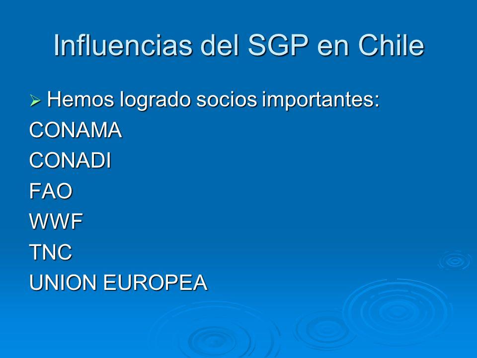 Influencias del SGP en Chile Hemos logrado socios importantes: Hemos logrado socios importantes:CONAMACONADIFAOWWFTNC UNION EUROPEA
