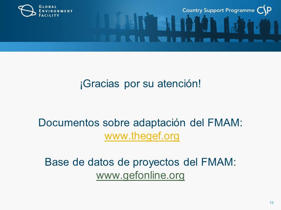 14 ¡Gracias por su atención! Documentos sobre adaptación del FMAM: www.thegef.org Base de datos de proyectos del FMAM: www.gefonline.org