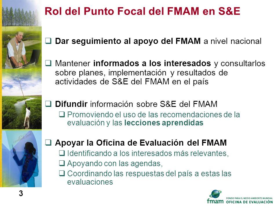3 Rol del Punto Focal del FMAM en S&E Dar seguimiento al apoyo del FMAM a nivel nacional Mantener informados a los interesados y consultarlos sobre pl