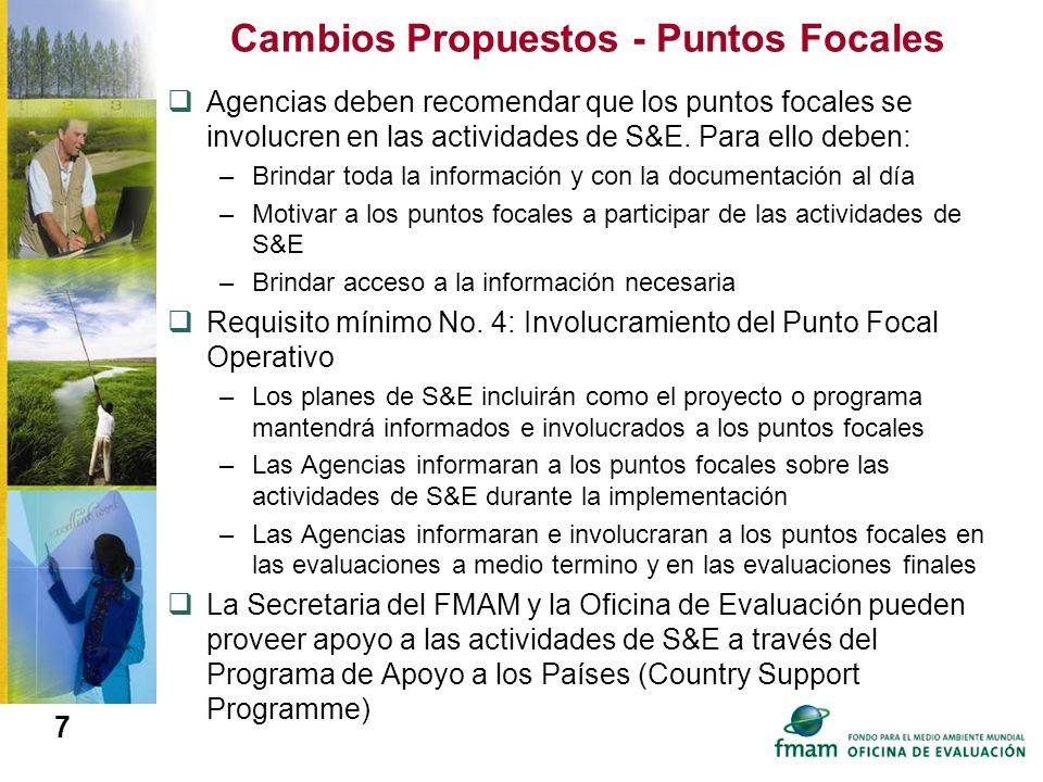 7 Cambios Propuestos - Puntos Focales Agencias deben recomendar que los puntos focales se involucren en las actividades de S&E. Para ello deben: –Brin