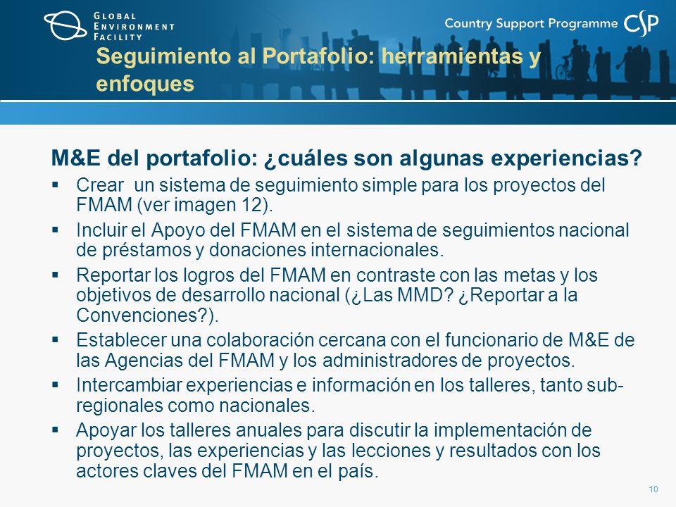 10 Seguimiento al Portafolio: herramientas y enfoques M&E del portafolio: ¿cuáles son algunas experiencias.