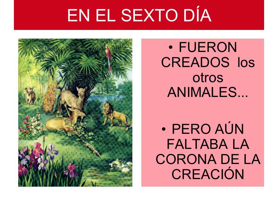 EN EL SEXTO DÍA FUERON CREADOS los otros ANIMALES... PERO AÚN FALTABA LA CORONA DE LA CREACIÓN