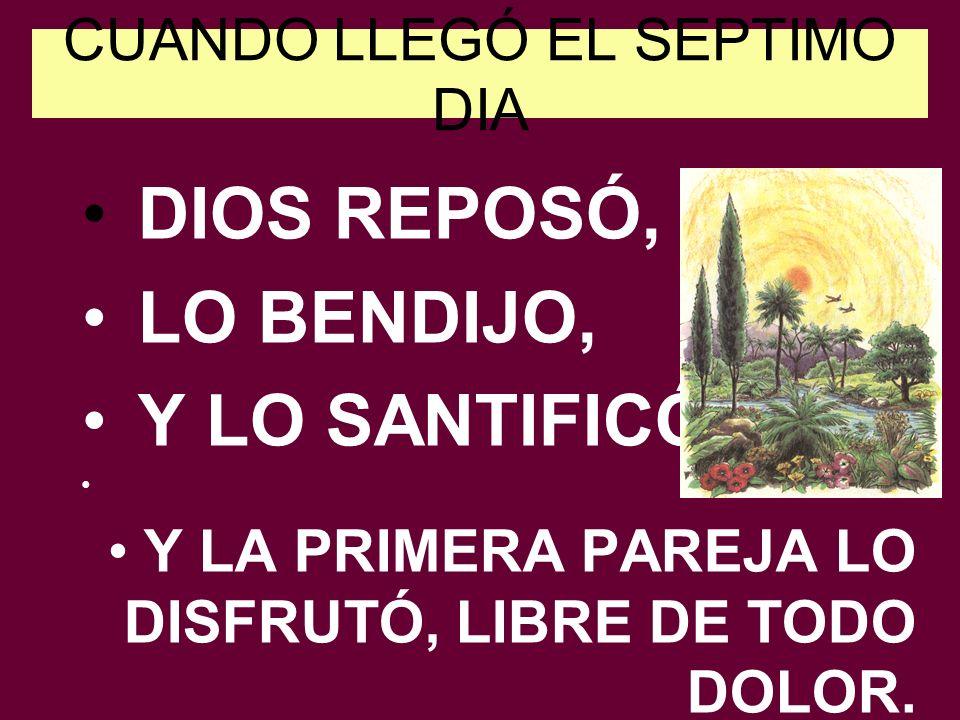 CUANDO LLEGÓ EL SEPTIMO DIA DIOS REPOSÓ, LO BENDIJO, Y LO SANTIFICÓ Y LA PRIMERA PAREJA LO DISFRUTÓ, LIBRE DE TODO DOLOR.
