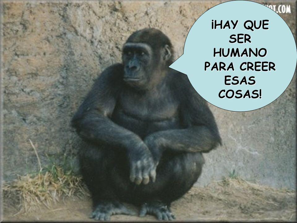¡HAY QUE SER HUMANO PARA CREER ESAS COSAS!