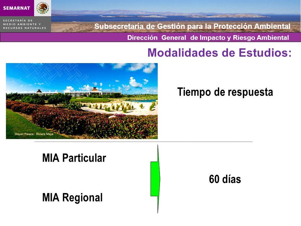 Subsecretaría de Gestión para la Protección Ambiental Modalidades de Estudios: MIA Particular MIA Regional Tiempo de respuesta 60 días Dirección Gener