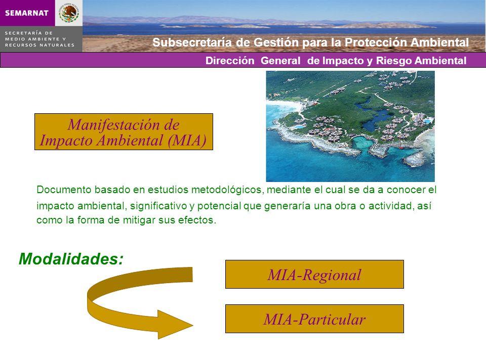Subsecretaría de Gestión para la Protección Ambiental Documento basado en estudios metodológicos, mediante el cual se da a conocer el impacto ambienta