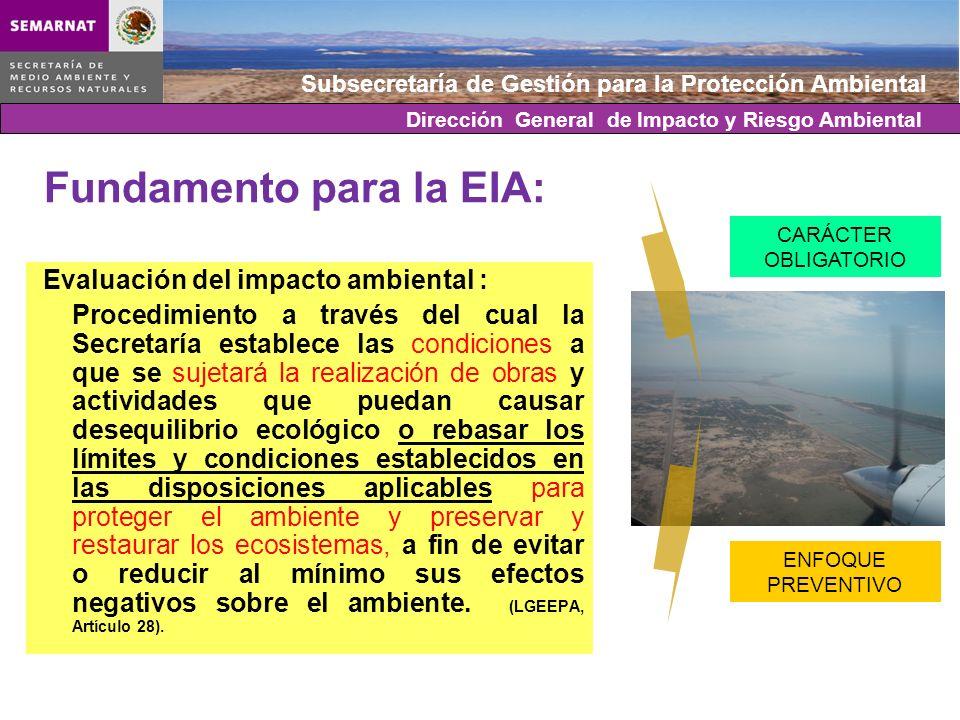 Subsecretaría de Gestión para la Protección Ambiental Fundamento para la EIA: Artículo 28: VII.- Cambios de uso del suelo de áreas forestales, así como en selvas y zonas áridas.