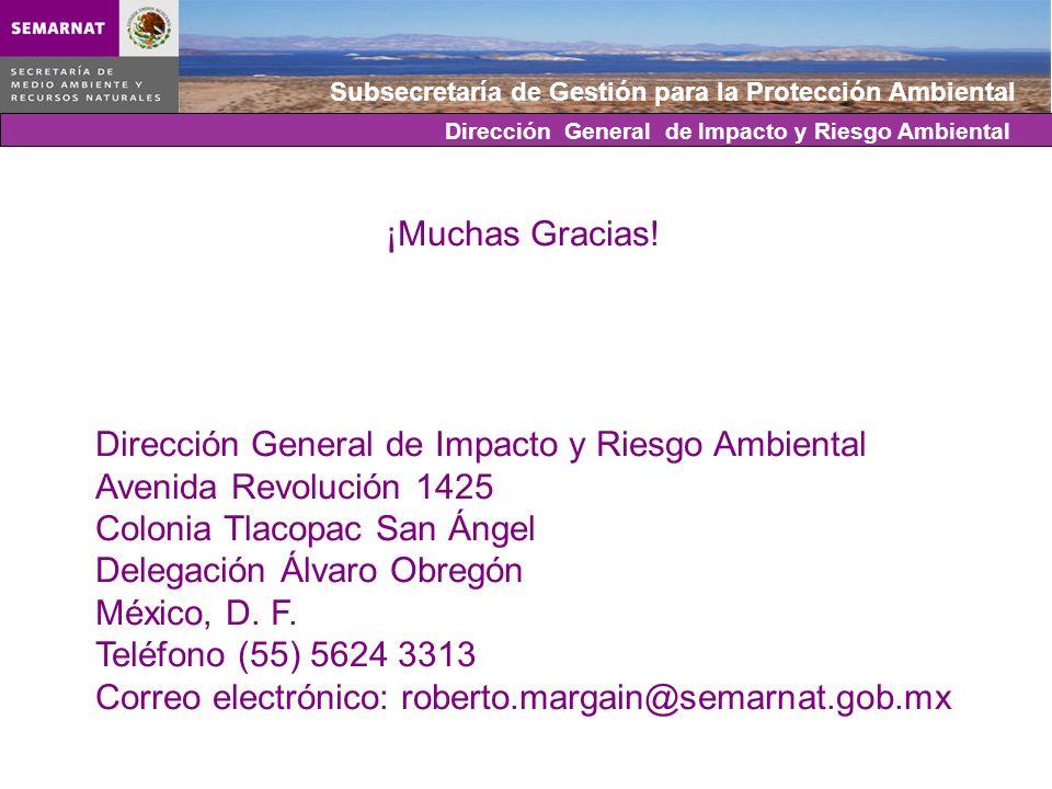 Subsecretaría de Gestión para la Protección Ambiental Dirección General de Impacto y Riesgo Ambiental ¡Muchas Gracias! Dirección General de Impacto y