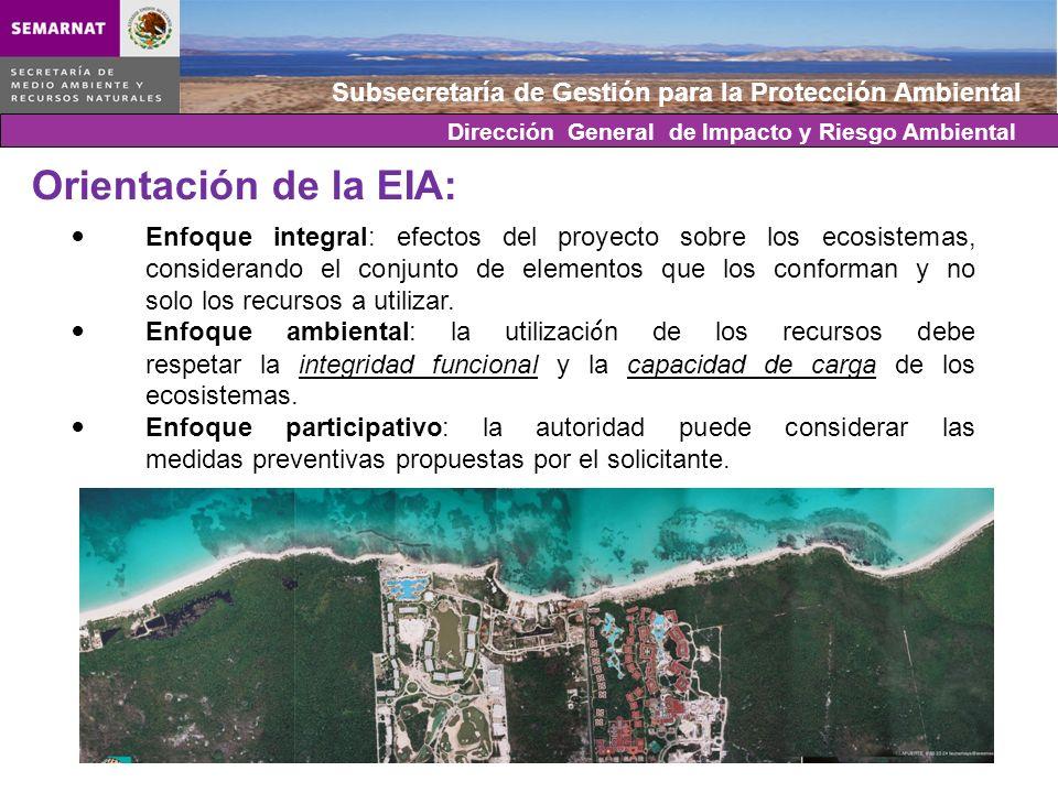 Subsecretaría de Gestión para la Protección Ambiental Enfoque integral: efectos del proyecto sobre los ecosistemas, considerando el conjunto de elemen
