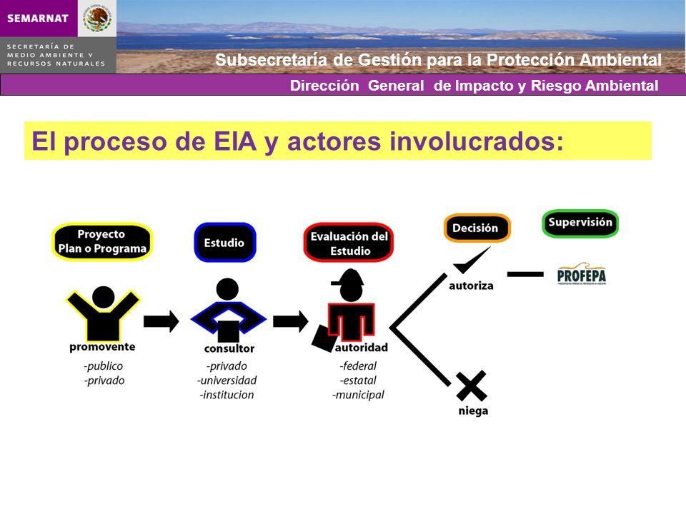 Subsecretaría de Gestión para la Protección Ambiental Incremento en la aplicación del instrumento de la EIA: En 20 años, 25 mil proyectos ingresados al PEIA (24,895).