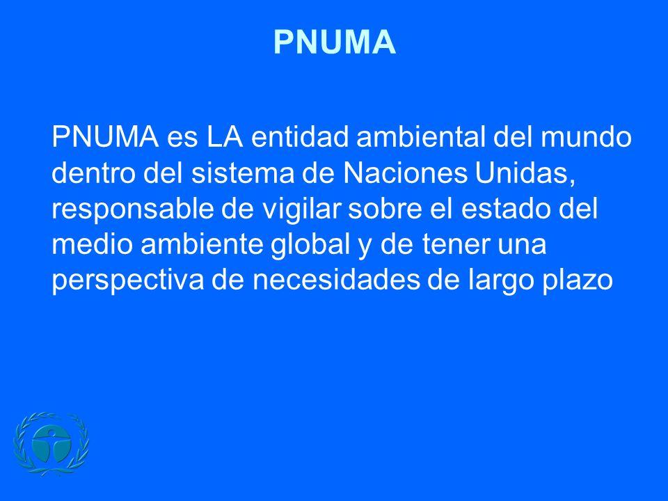 PNUMA PNUMA es LA entidad ambiental del mundo dentro del sistema de Naciones Unidas, responsable de vigilar sobre el estado del medio ambiente global y de tener una perspectiva de necesidades de largo plazo