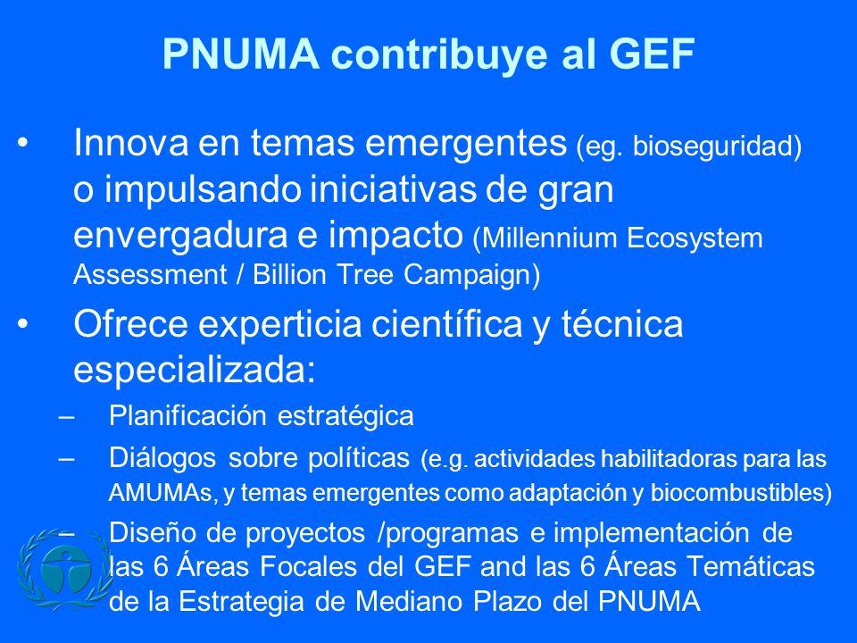 PNUMA contribuye al GEF Innova en temas emergentes (eg. bioseguridad) o impulsando iniciativas de gran envergadura e impacto (Millennium Ecosystem Ass