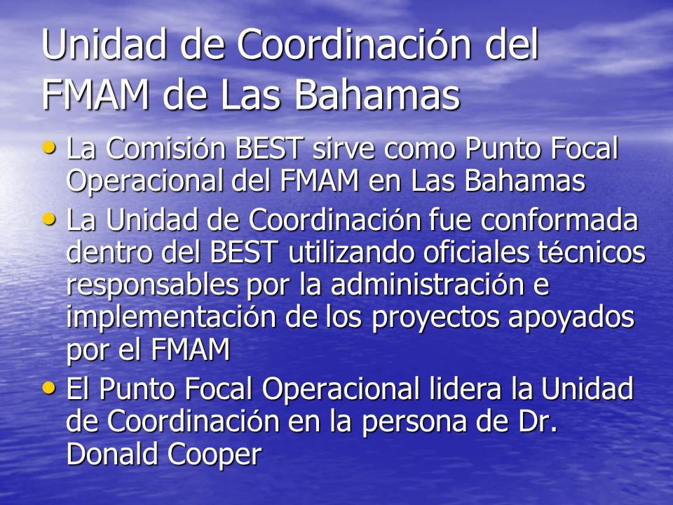 Pr ó ximos pasos Implementar el Componente 2 durante 2007-2008 Implementar el Componente 2 durante 2007-2008 Mantener la base de datos de proyectos y actividades del FMAM a nivel nacional y regional Mantener la base de datos de proyectos y actividades del FMAM a nivel nacional y regional