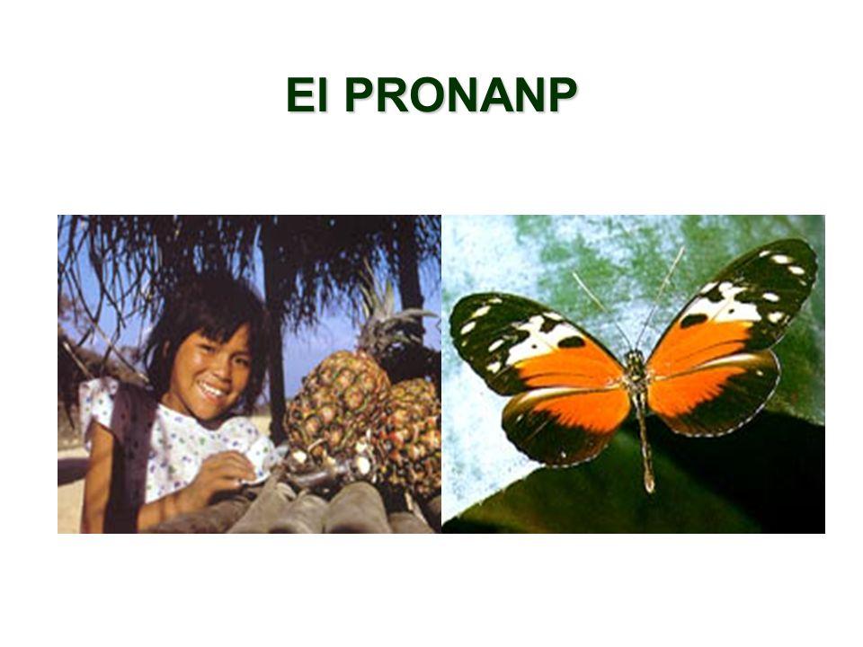El PRONANP