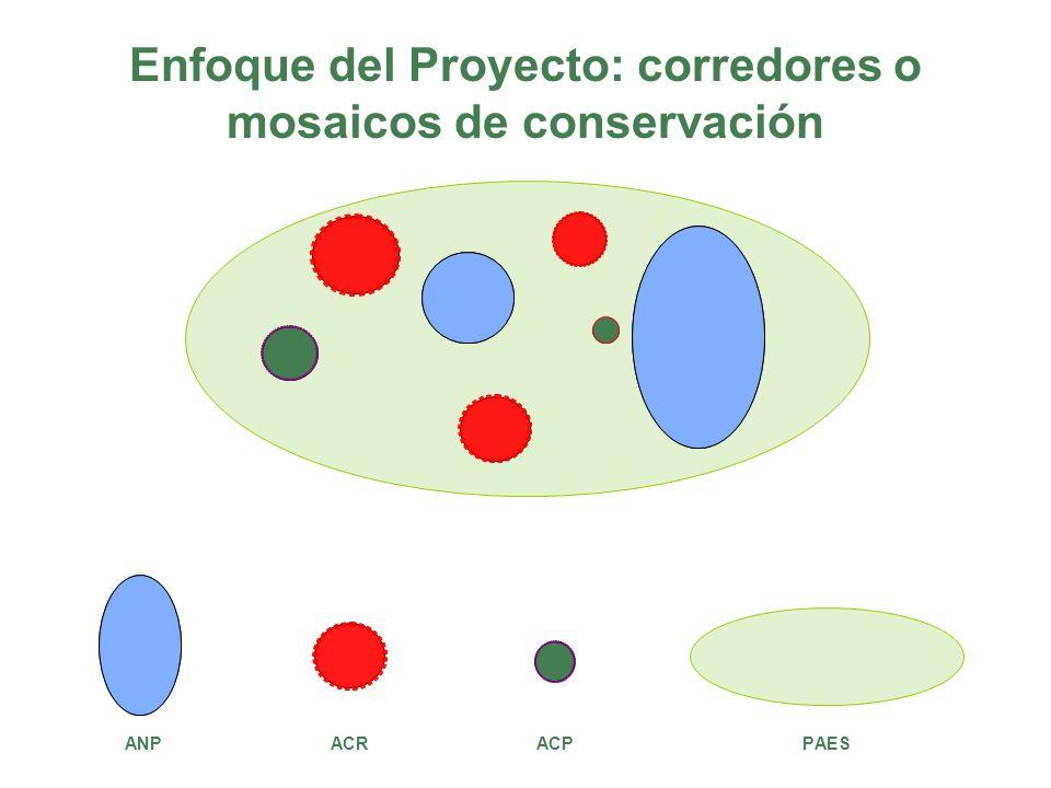 Enfoque del Proyecto: corredores o mosaicos de conservación ANP ACR ACP PAES