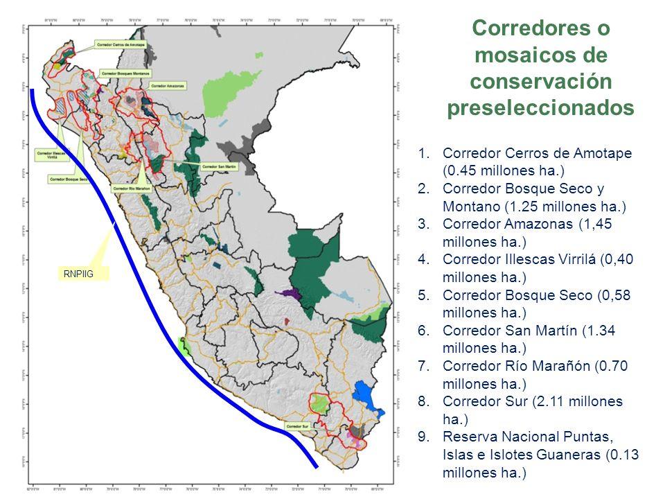 RNPIIG 1. 1.Corredor Cerros de Amotape (0.45 millones ha.) 2. 2.Corredor Bosque Seco y Montano (1.25 millones ha.) 3. 3.Corredor Amazonas (1,45 millon