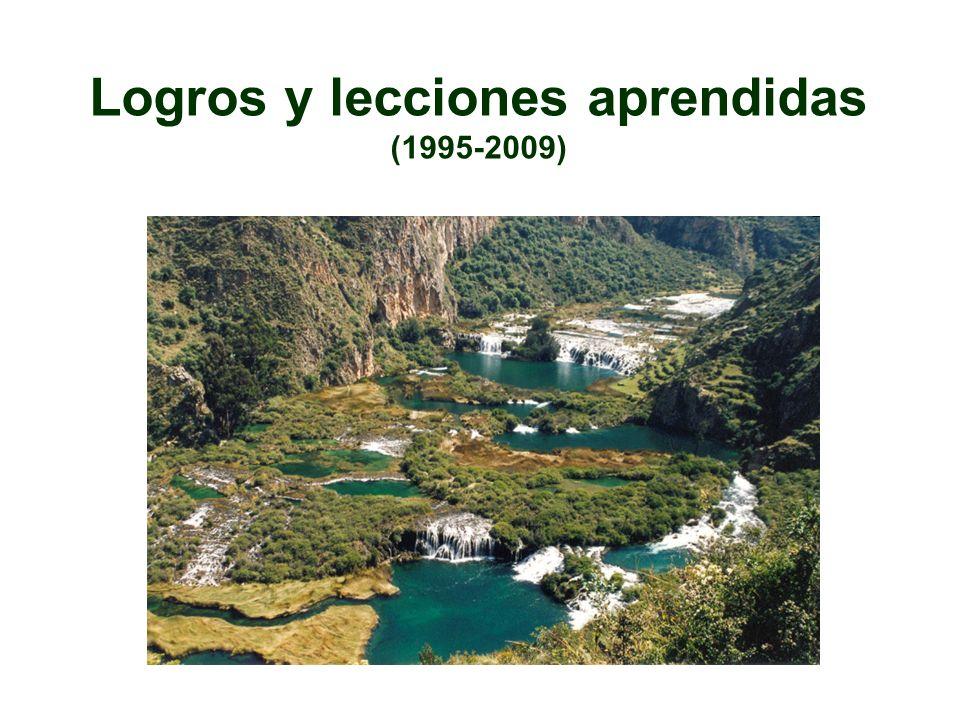 Logros y lecciones aprendidas (1995-2009)