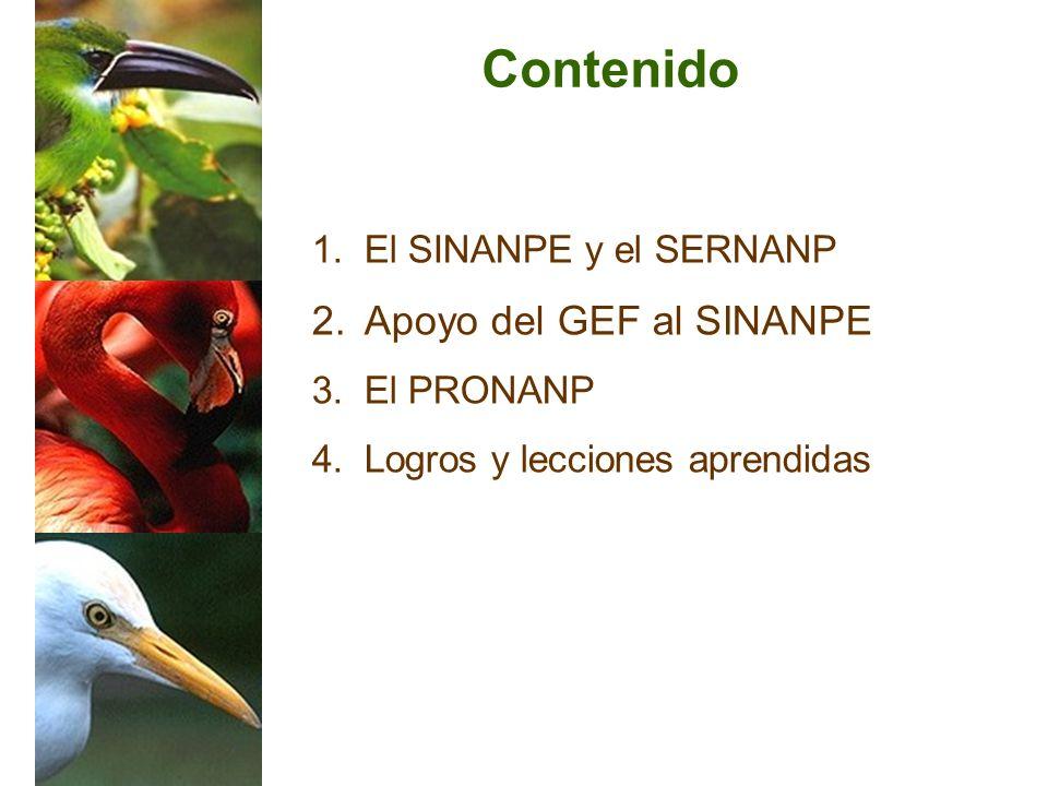 1. 1.El SINANPE y el SERNANP 2. 2.Apoyo del GEF al SINANPE 3. 3.El PRONANP 4. 4.Logros y lecciones aprendidas Contenido