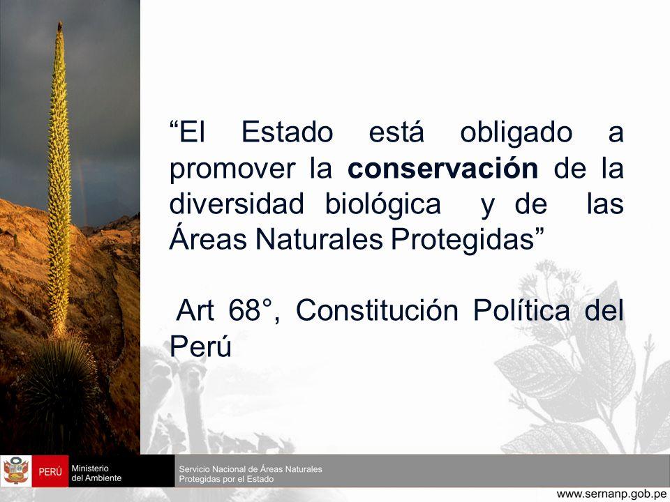 El Estado está obligado a promover la conservación de la diversidad biológica y de las Áreas Naturales Protegidas Art 68°, Constitución Política del P