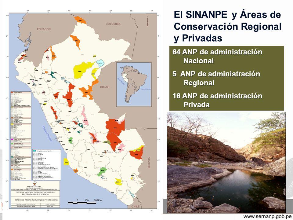Niveles de Administración de las ANP PARQUE NACIONAL SANTUARIO NACIONAL SANTUARIO HISTORICO RESERVA PAISAJISTA REFUGIO DE VIDA SILVESTRE RESERVA NACIONAL RESERVA COMUNAL BOSQUE DE PROTECCION COTO DE CAZA AREA DE CONSERVACION REGIONAL AREA DE CONSERVACION PRIVADA ZONARESERVADA S IN A N P E Administración Nacional (64) Administración Regional (5) (administrado por los Gobiernos Regionales) Administración Privada (16) (administrado por los privados)