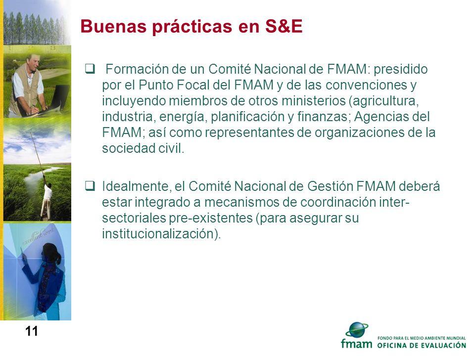 Buenas prácticas en S&E Formación de un Comité Nacional de FMAM: presidido por el Punto Focal del FMAM y de las convenciones y incluyendo miembros de