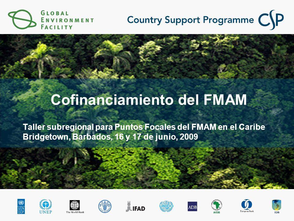Taller subregional para Puntos Focales del FMAM en el Caribe Bridgetown, Barbados, 16 y 17 de junio, 2009 Cofinanciamiento del FMAM