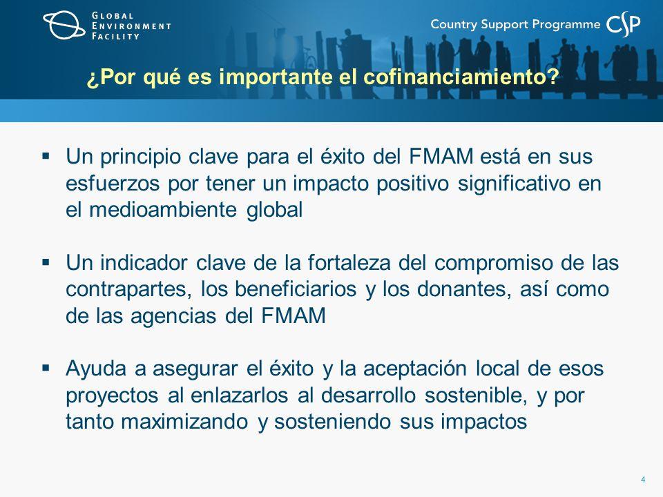 44 ¿Por qué es importante el cofinanciamiento? Un principio clave para el éxito del FMAM está en sus esfuerzos por tener un impacto positivo significa