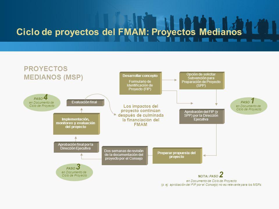 Ciclo de proyectos del FMAM: Proyectos Medianos Preparar propuesta del proyecto Opción de solicitar Subvención para Preparación de Proyecto (SPP) Aprobación del FIP (y SPP) por la Dirección Ejecutiva PROYECTOS MEDIANOS (MSP) Desarrollar concepto Formulario de Identificación de Proyecto (FIP) Implementación, monitoreo y evaluación del proyecto Evaluación final PASO 1 en Documento de Ciclo de Proyecto NOTA: PASO 2 en Documento de Ciclo de Proyecto (p.