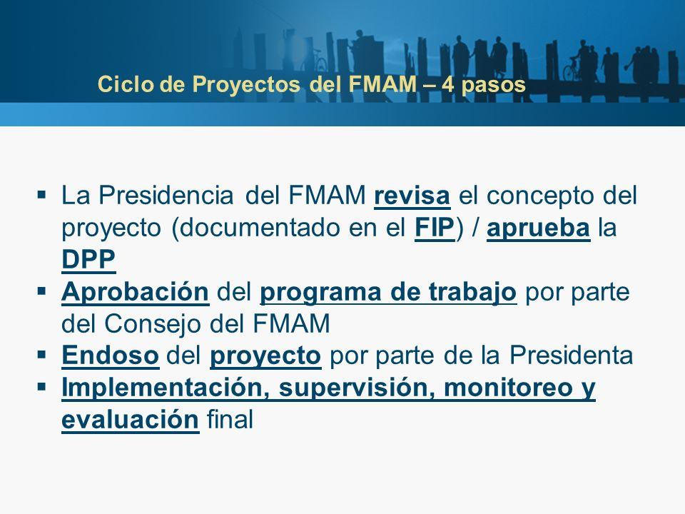Ciclo de Proyectos del FMAM – 4 pasos La Presidencia del FMAM revisa el concepto del proyecto (documentado en el FIP) / aprueba la DPP Aprobación del programa de trabajo por parte del Consejo del FMAM Endoso del proyecto por parte de la Presidenta Implementación, supervisión, monitoreo y evaluación final