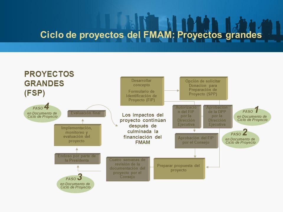 Ciclo de proyectos del FMAM: Proyectos grandes PROYECTOS GRANDES (FSP) Preparar propuesta del proyecto Opción de solicitar Donacion para Preparación de Proyecto (SPP) Aprobación del FIP por el Consejo Desarrollar concepto Formulario de Identificación de Proyecto (FIP) Autorizació n del FIP por la Dirección Ejecutiva Aprobación de la DPP por la Dirección Ejecutiva Cuatro semanas de revisión de la documentación del proyecto por el Consejo Implementación, monitoreo y evaluación del proyecto Evaluación final PASO 1 en Documento de Ciclo de Proyecto PASO 2 en Documento de Ciclo de Proyecto PASO 3 en Documento de Ciclo de Proyecto PASO 4 en Documento de Ciclo de Proyecto Endoso por parte de la Presidenta Los impactos del proyecto continúan después de culminada la financiación del FMAM
