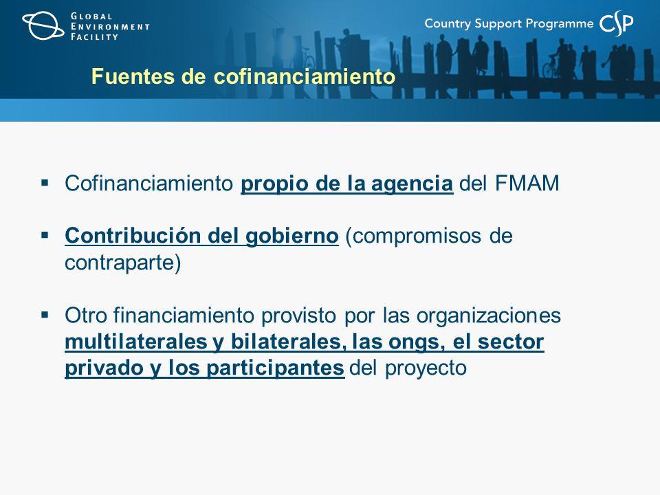 Fuentes de cofinanciamiento Cofinanciamiento propio de la agencia del FMAM Contribución del gobierno (compromisos de contraparte) Otro financiamiento provisto por las organizaciones multilaterales y bilaterales, las ongs, el sector privado y los participantes del proyecto