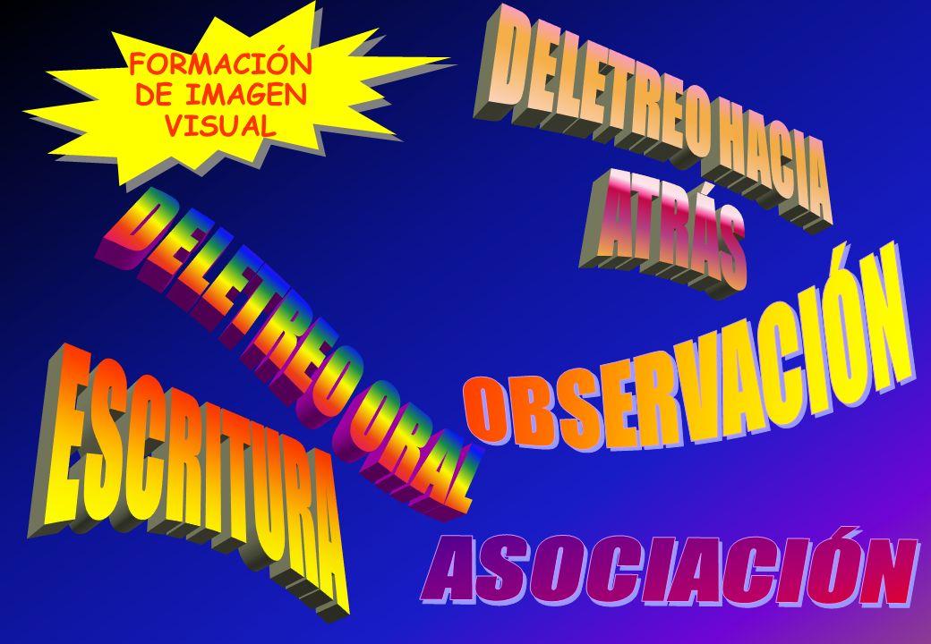FORMACIÓN DE IMAGEN VISUAL FORMACIÓN DE IMAGEN VISUAL