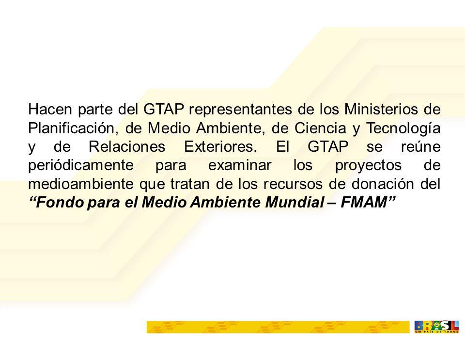 COFIEX (MP, MF,MRE, BACEN) GTEC(Financiamentos) GTAP(FMAM) MREMCTMMAMP PROCEDIMENTOS DE PROJETOS FMAM ORGANIGRAMA Punto Focal Político Punto Focal Operacional
