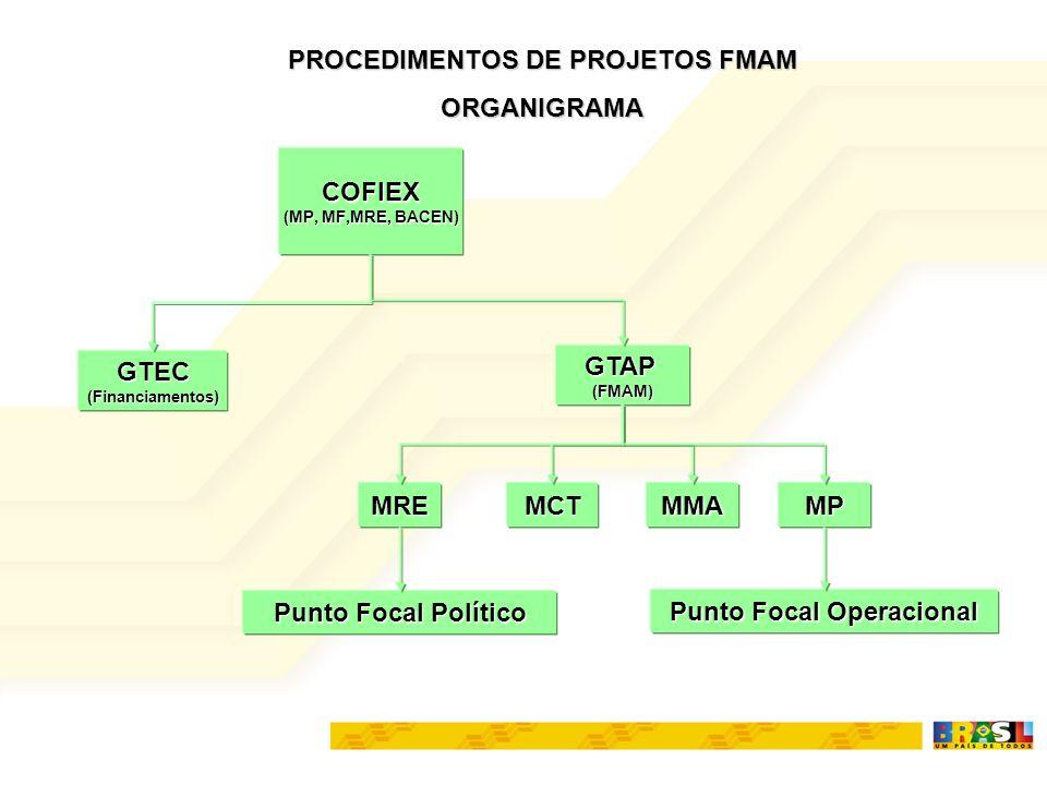 COFIEX (MP, MF,MRE, BACEN) GTEC(Financiamentos) GTAP(FMAM) MREMCTMMAMP PROCEDIMENTOS DE PROJETOS FMAM ORGANIGRAMA Punto Focal Político Punto Focal Ope