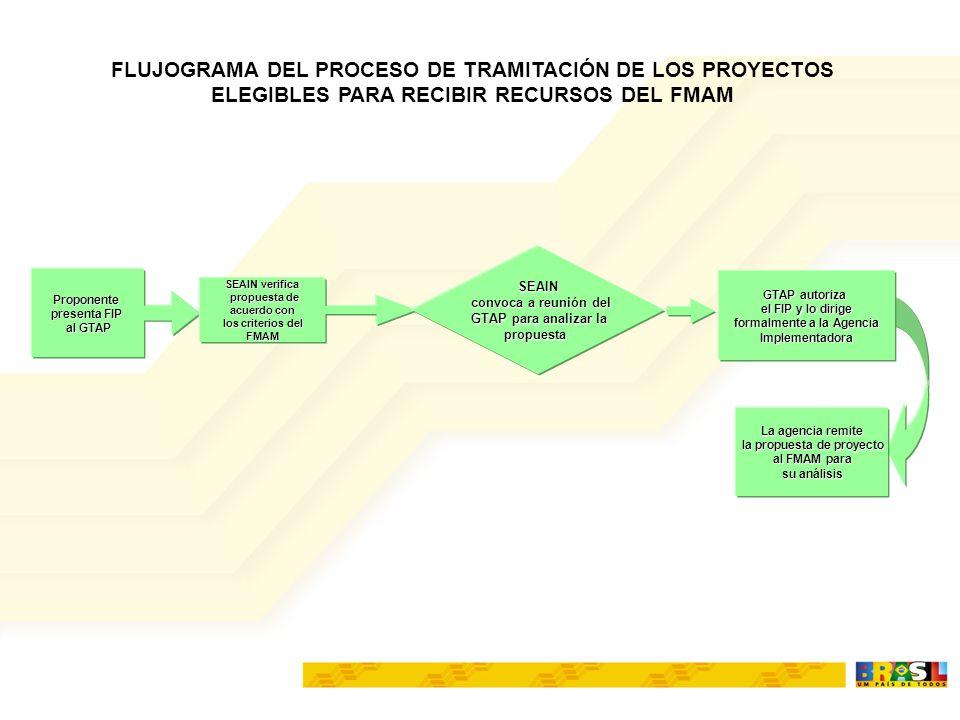 FLUJOGRAMA DEL PROCESO DE TRAMITACIÓN DE LOS PROYECTOS ELEGIBLES PARA RECIBIR RECURSOS DEL FMAM Proponente presenta FIP al GTAP SEAIN verifica propuesta de propuesta de acuerdo con los criterios del FMAM SEAIN convoca a reunión del convoca a reunión del GTAP para analizar la propuesta GTAP autoriza el FIP y lo dirige formalmente a la Agencia Implementadora Implementadora La agencia remite la propuesta de proyecto al FMAM para su análisis