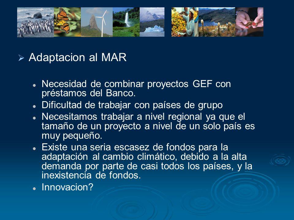 Adaptacion al MAR Necesidad de combinar proyectos GEF con préstamos del Banco. Dificultad de trabajar con países de grupo Necesitamos trabajar a nivel