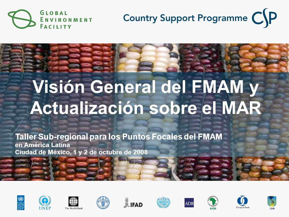 Países con asignación en grupo en BD (a Julio 31 de 2008) Initial Upper Limit GEF-4 Revised Upper Limit GEF-4 Utilized GEF-4 El Salvador3.33.80.000 Paraguay3.33.81.307 Uruguay3.33.81.100