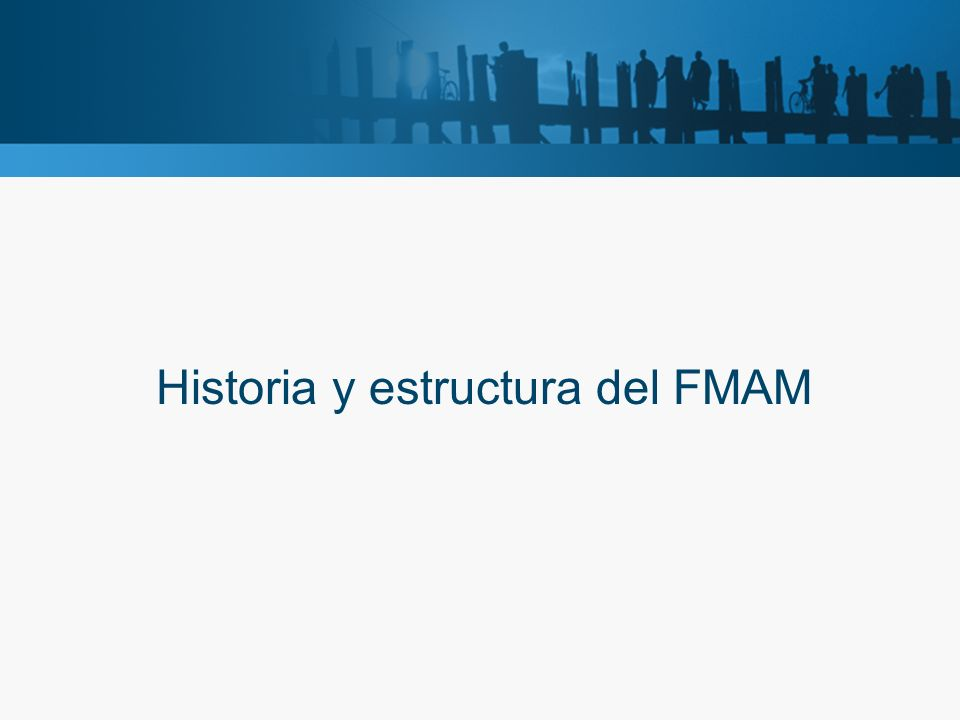Historia y estructura del FMAM