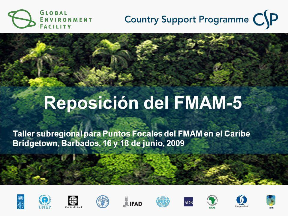 Reposición del FMAM-5 Taller subregional para Puntos Focales del FMAM en el Caribe Bridgetown, Barbados, 16 y 18 de junio, 2009