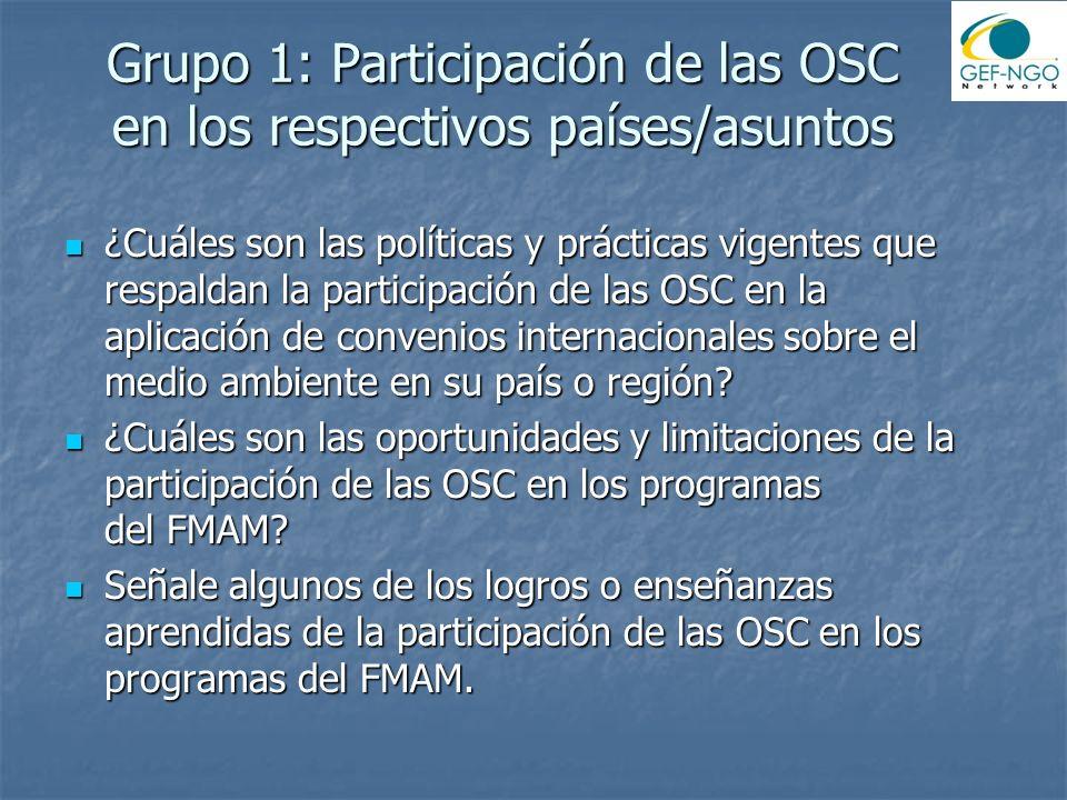 Grupo 1: Participación de las OSC en los respectivos países/asuntos ¿Cuáles son las políticas y prácticas vigentes que respaldan la participación de las OSC en la aplicación de convenios internacionales sobre el medio ambiente en su país o región.