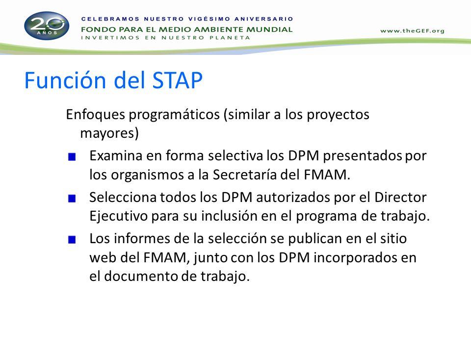 Función del STAP Enfoques programáticos (similar a los proyectos mayores) Examina en forma selectiva los DPM presentados por los organismos a la Secretaría del FMAM.